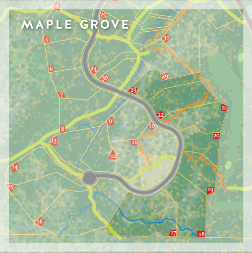Maple Grove at Chelsea Highlands