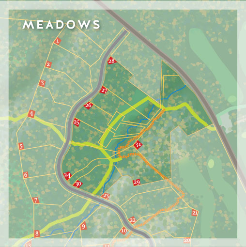 The Meadows at Chelsea Highlands
